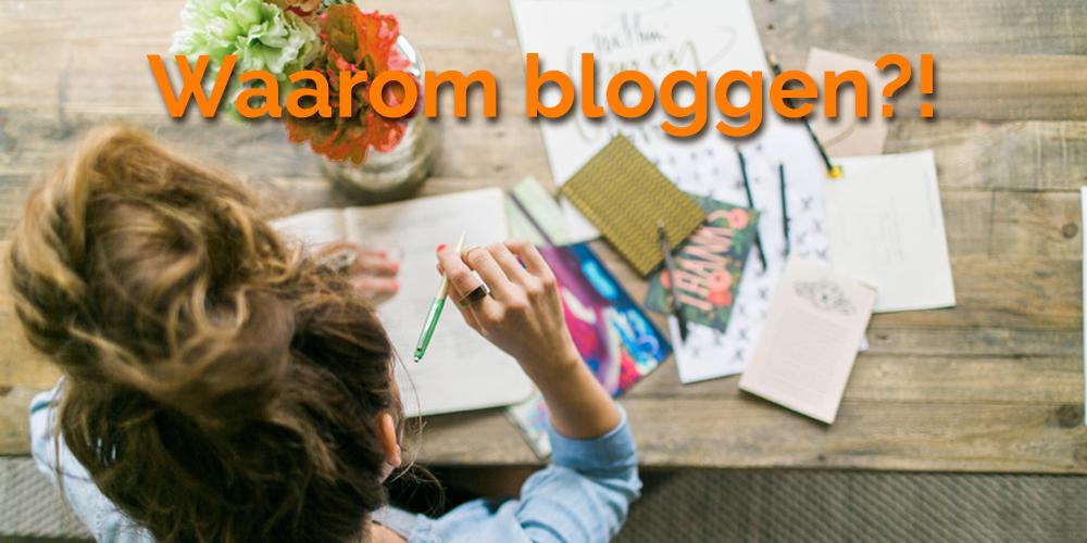 blog waarom webshop